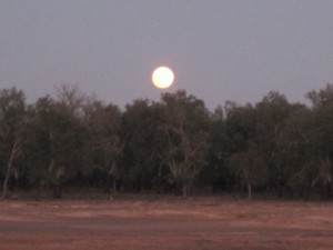 Calling it a night - the moon rises over our first bush cmp