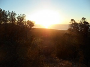 Unexpected bonus - Sunset over our bush camp near Volubilis
